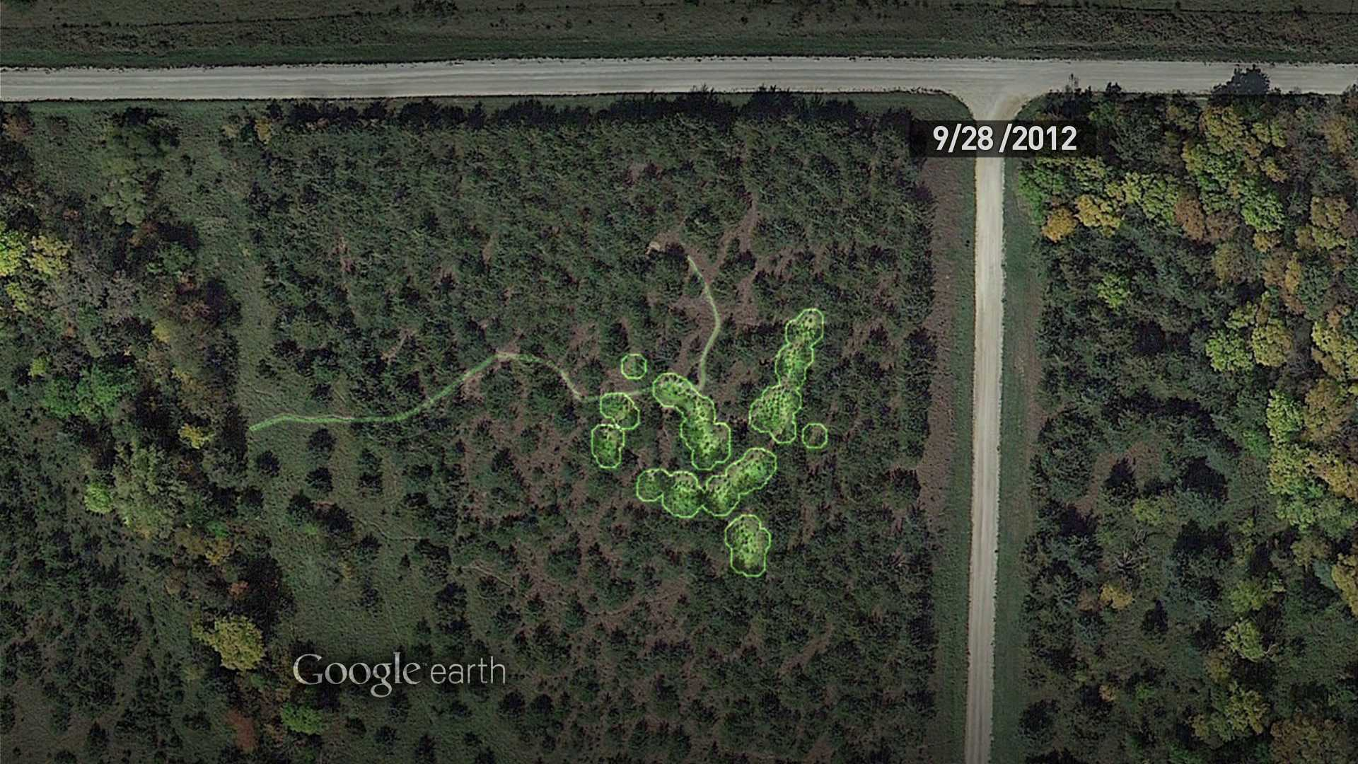 marijuana fields on google earth